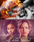 Safe and Sound - The Hunger Games ➶