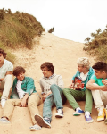 1D Drives Me Crazy! {One Direction}