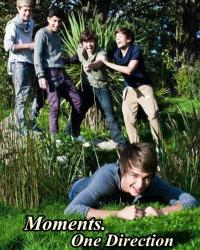 Moments (One Direction)