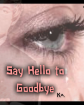 Say Hello To Goodbye [One Direction]