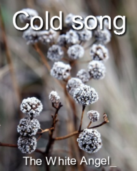 Cold song