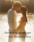Everything about you - One Direction 2'er