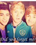 Did you forget me? - One direction