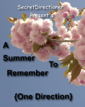 A Summer To Remember {One Direction}