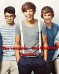 The vecation - One Direction