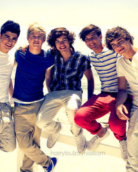 A Summer With One Direction