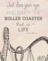 The Roller Coaster That is Life