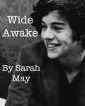 Wide Awake: A Harry Styles Love Story