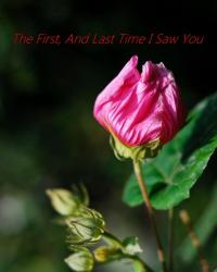 The first, and last time i saw you {1D} (One Shot)