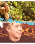 Only In My Perfect Dreams