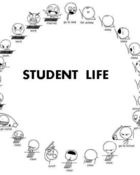 A student's adventure
