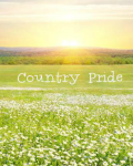 Country Pride [A Harry Styles Love Story]