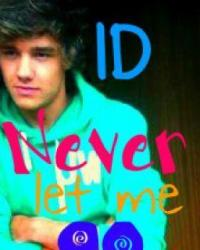 Never let me go - A One Direction love story
