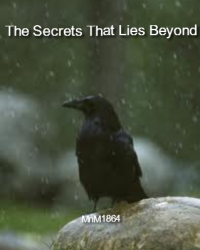 The Secrets That Lies Beyond