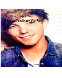 The Day I Met You (A Louis Tomlinson Fanfic)