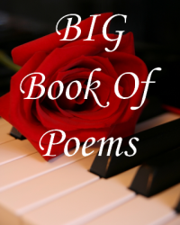 BIG Book Of Poems