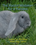 The Rabbit Mistaken for a Rabake