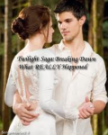 The Twilight Saga: Breaking Dawn -- What REALLY Happened (ON HOLD)
