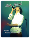 One Direction: Blue Velvet