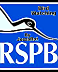(Bird Watching) RSPB POETRY COMPETTION