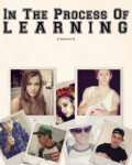 In the Process of Learning - Niall Horan