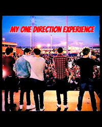 My One Direction Experience