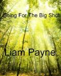 going for the big shot (Liam Payne love story)