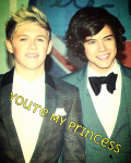 You're My Princess (completed)