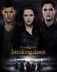 The Twilight Saga: Breaking Dawn... with a twist