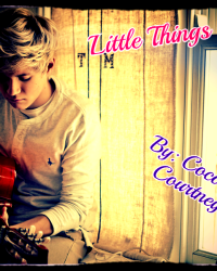 Little Things *Niall Horan Love Story*