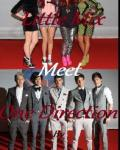 <3 Meeting One Direction <3