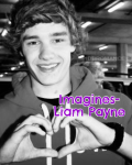 Imagines- Liam Payne *REQUESTS CURRENTLY CLOSED SORRY*