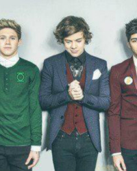 The Danger Of 1D - One Direction