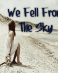 We Fell From The Sky