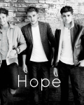 Directioners' hope