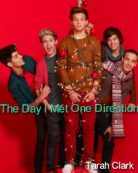 The Day I Met One Direction
