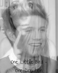 One Little Bird - One Direction