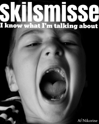 Skilsmisse - I know what i'm talking about