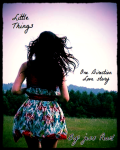 Little things (one direction love story)