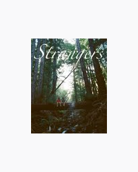 Strangers (a Harry Styles fanfiction)