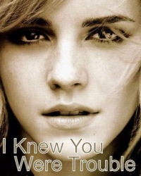 I Knew You Were Trouble - A Harry Styles Fanfic