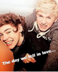 The Day We Fell In Love.... (A Harry Styles & Niall Horan Fanfic)