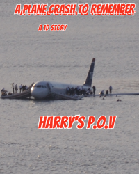 A Plane crash to remember – A One Direction story