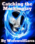 Catching the Mockingjay