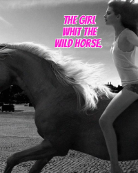 The Story Of A Wild Horse.