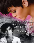 I promise we will Meet again - One Direction