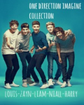 ONE DIRECTION IMAGINE COLLECTION
