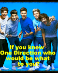 If you knew One Direction who would be what to you?