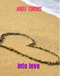 hate turns into love ( a one direction fan fiction)