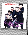 One Boy, One Love, One Direction